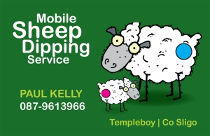 Business cards Paul Kelly_Sheep Dipping